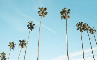 Boligindretning California Style