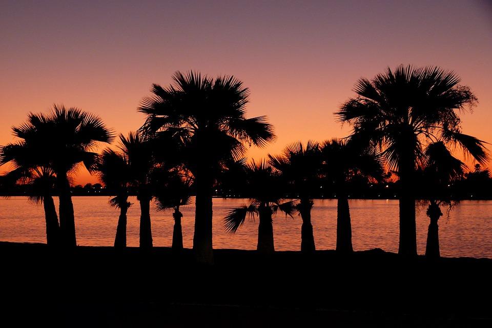 palmer Californien