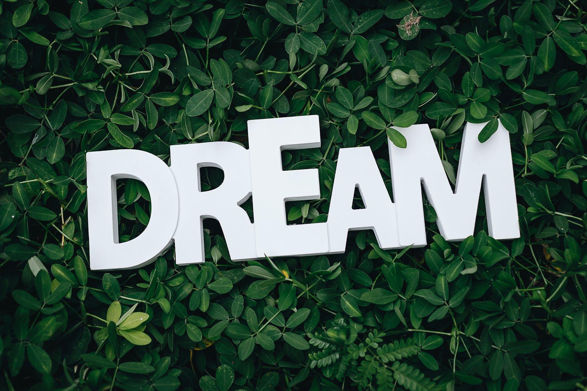 motiv af teksten dream