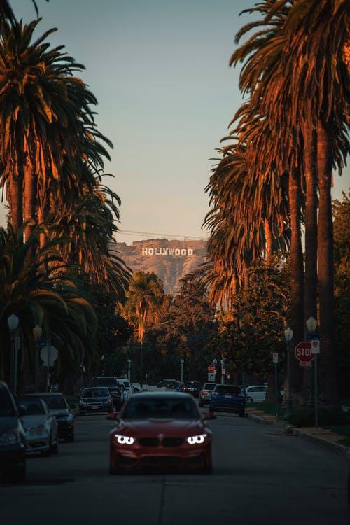 Hollywood-skilt